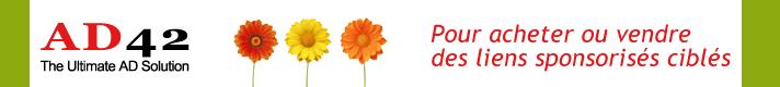 Bannière logo de la régie publicitaire, AD42